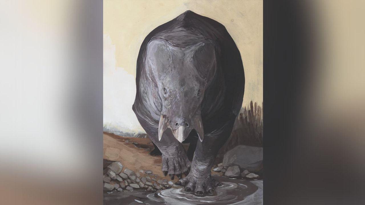Stort däggdjur som levde samtidigt som dinosaurer hittat
