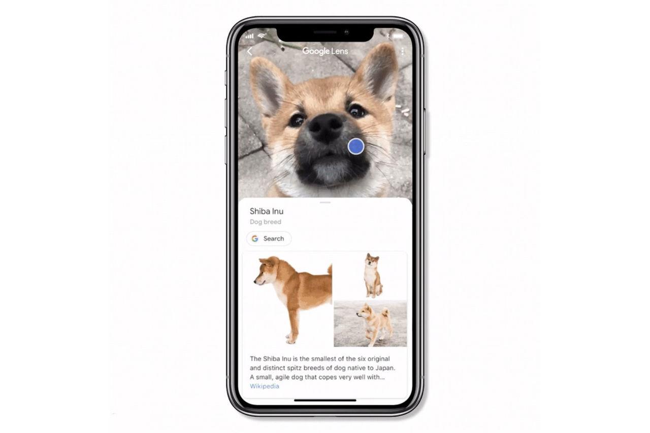 Nu kommer Google Lens till iOS