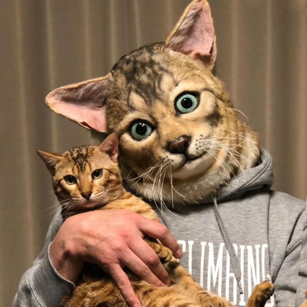 Nu kan du se ut som din katt
