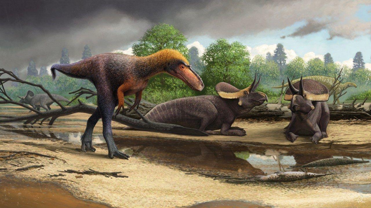 Tidigare okänd släkting till tyrannosaurus rex hittad