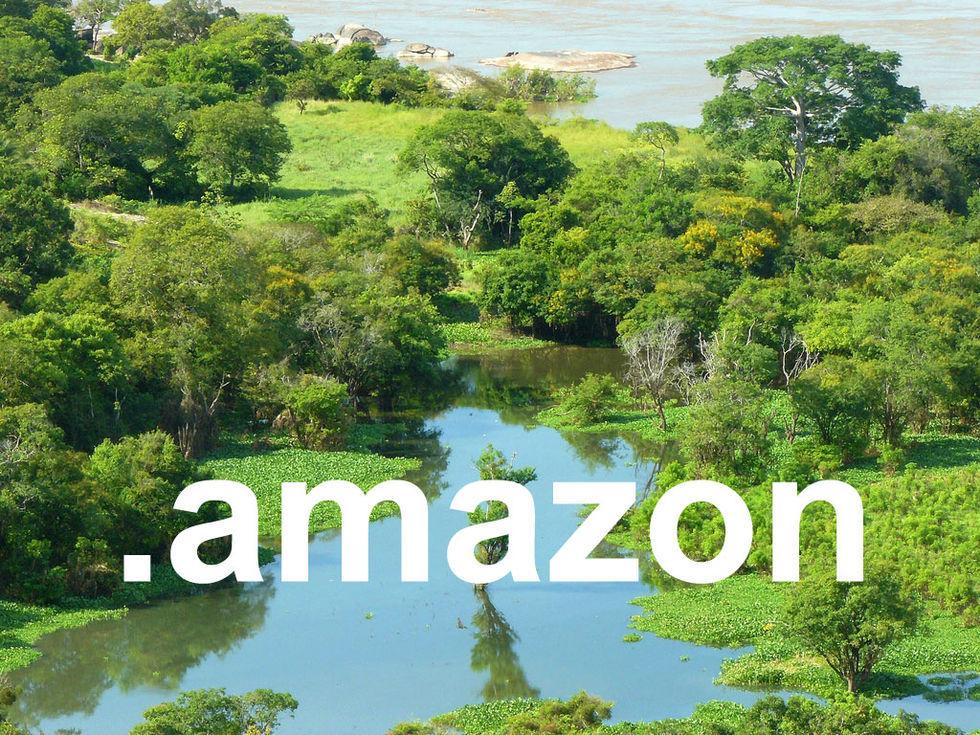 Amazon ser ut att få rätten till .amazon-domänen