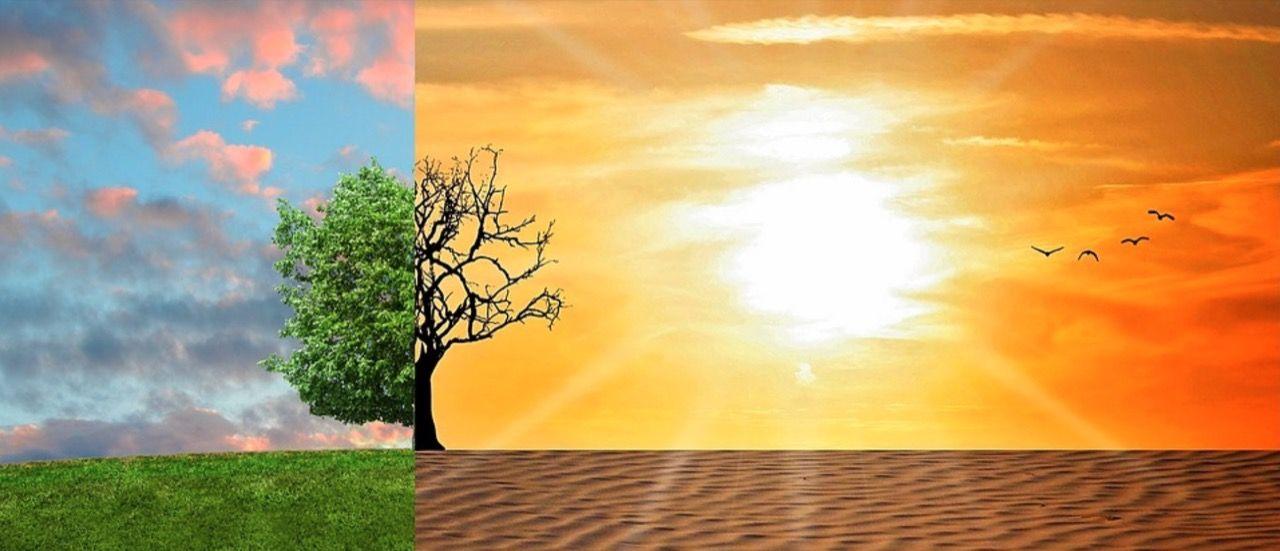 Svenskarna tror att klimatförändringar beror på människan