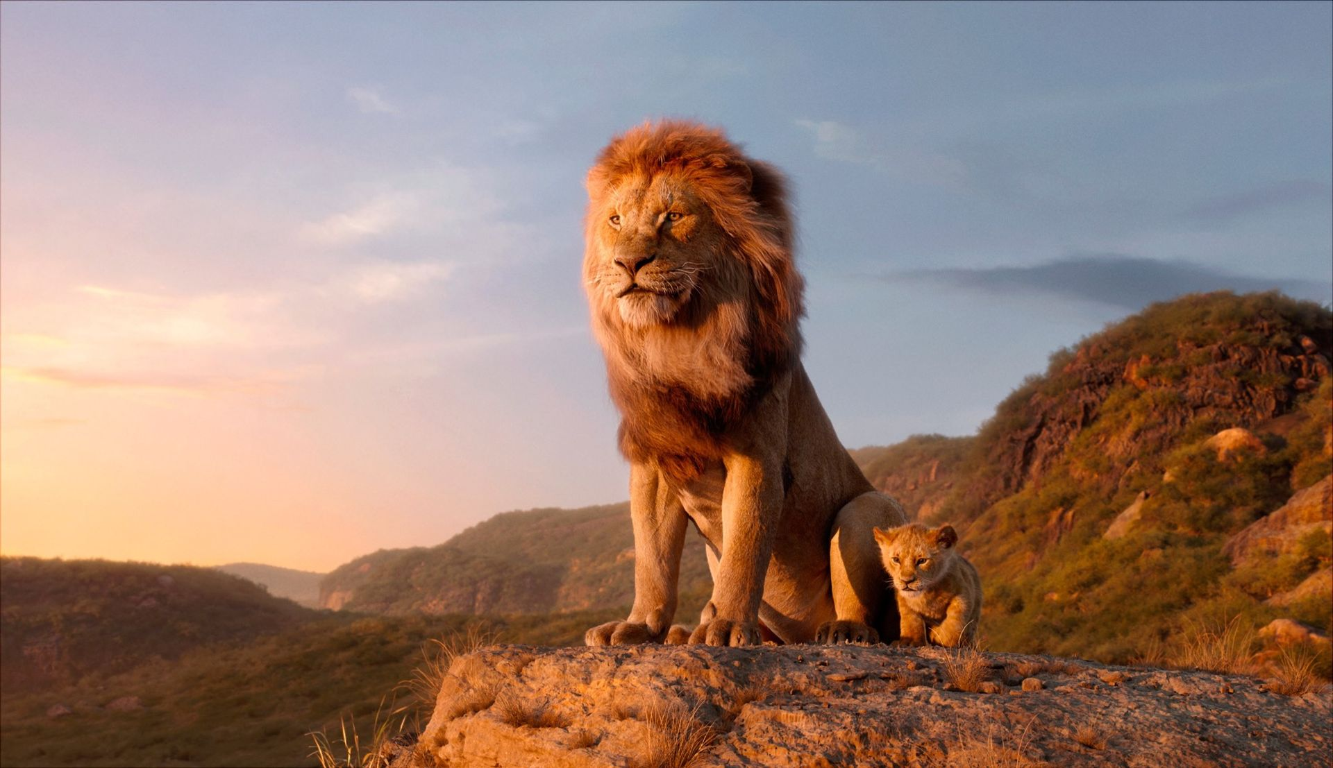 Endast en scen i The Lion King filmades på riktigt. Allt