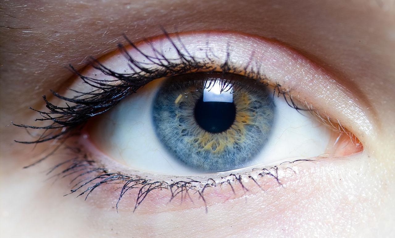 Forskare tar fram lins som kan zooma när man blinkar