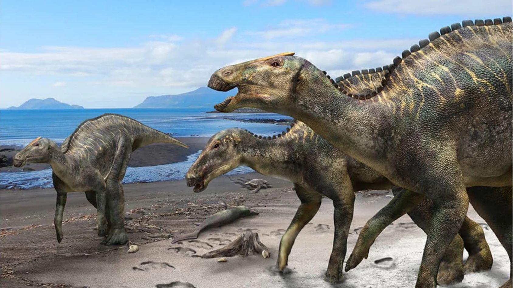 Tidigare okänd dinosaurieart hittad i Japan