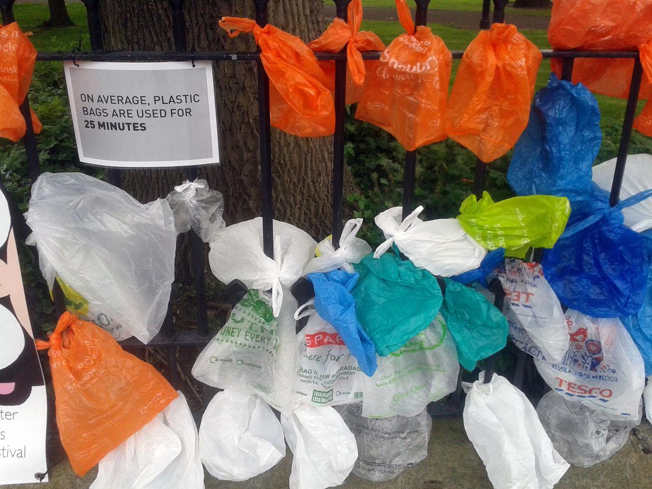 Regeringen föreslår skatt på plastpåsar