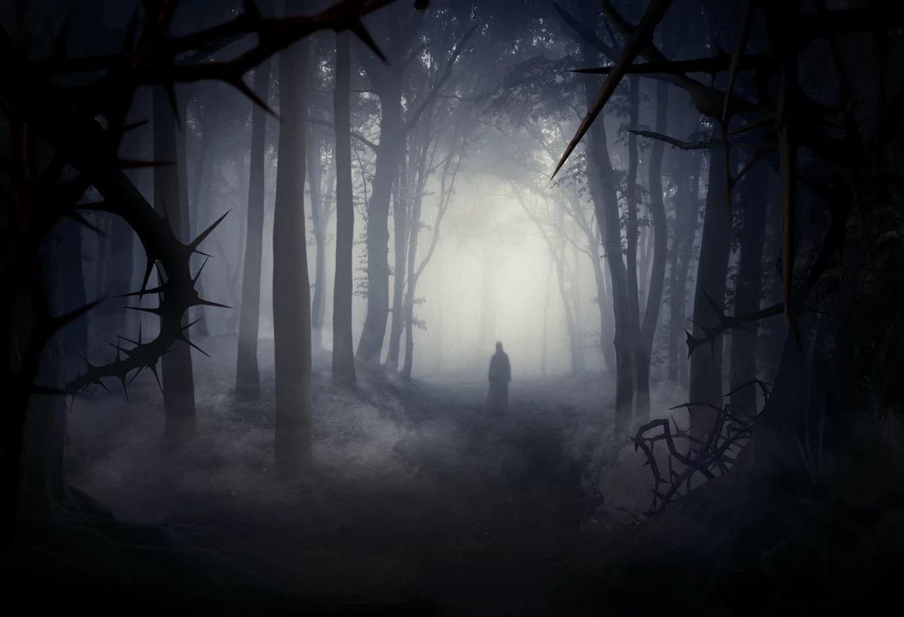 Idag öppnar Skogen på Liseberg