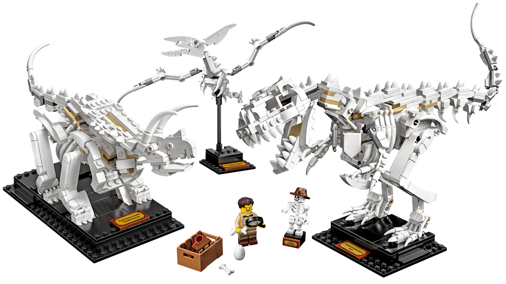 Nu kommer dinosaurie-skelett i Lego