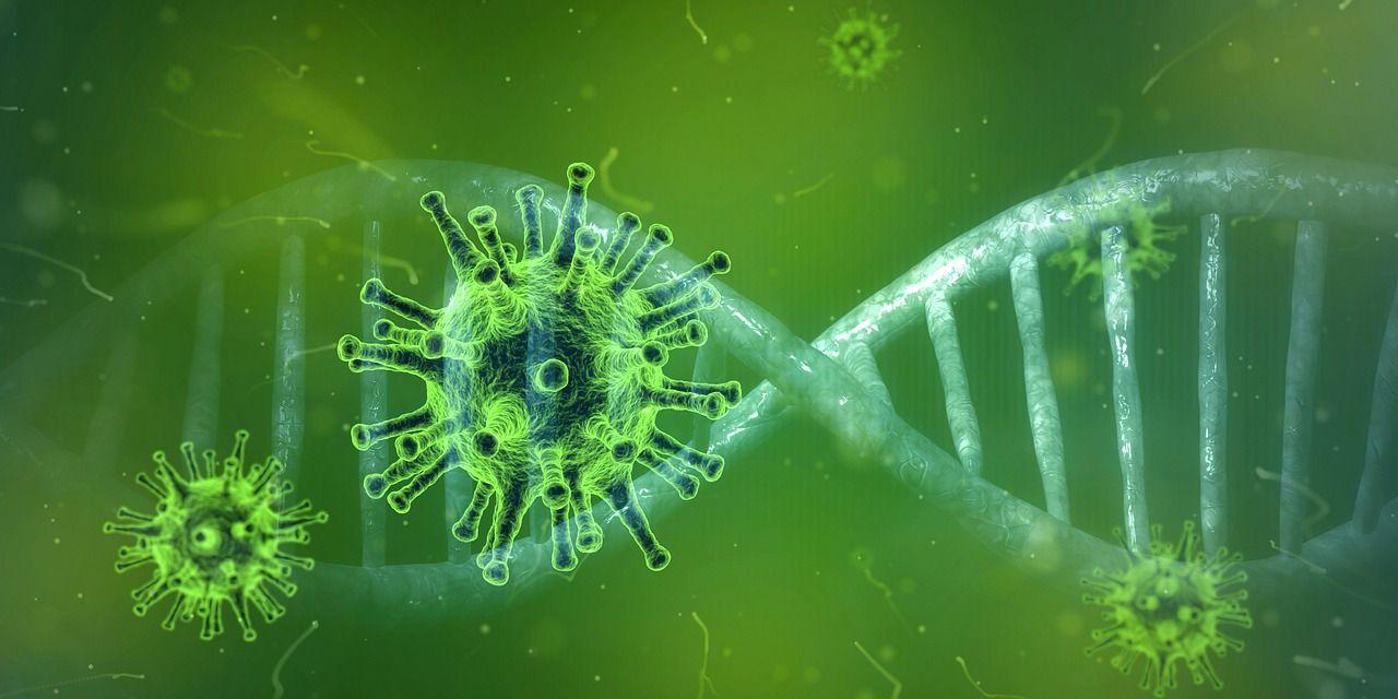 Det nya corona-viruset har äntligen fått ett officiellt namn