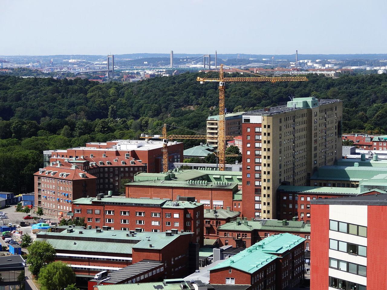 Sverige har fått sitt andra fall av coronaviruset