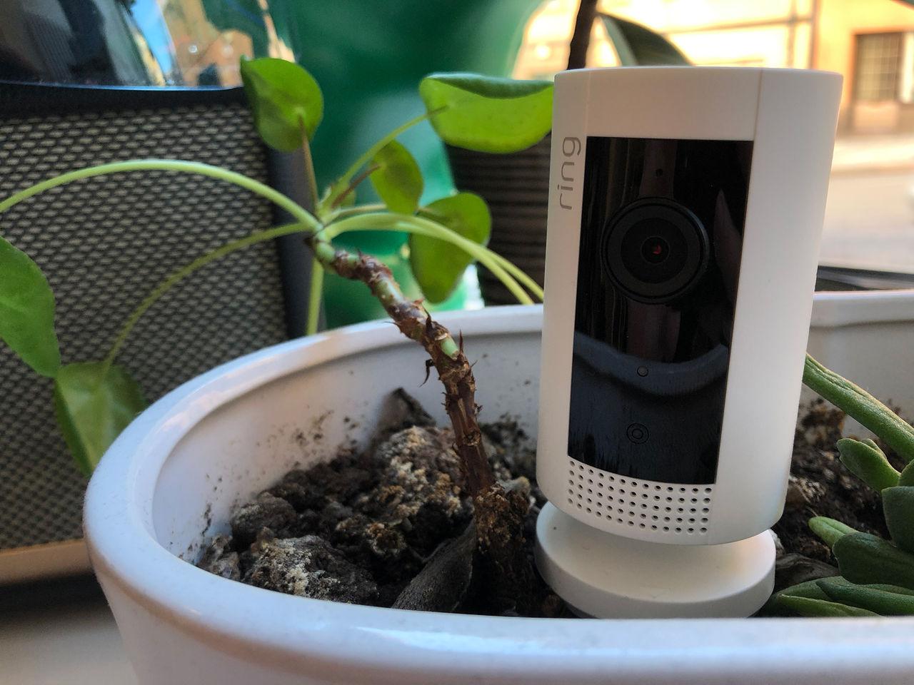 Vi har testat Rings lilla Indoor Cam