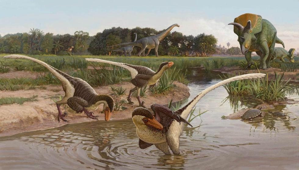 Tidigare okänd dinosaurieart upptäckt i USA