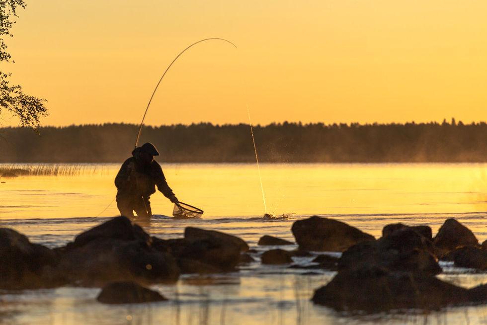 Rekordbilligt att fiska under pandemin