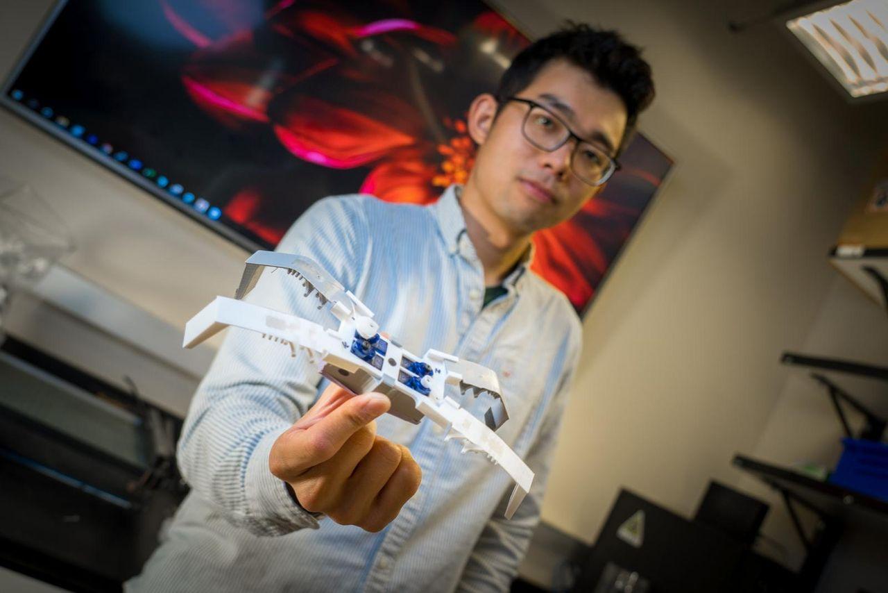 Insektsliknande robotar skrivs ut på några minuter