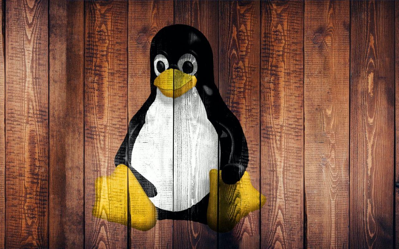 Linux skippar rasistisk terminologi