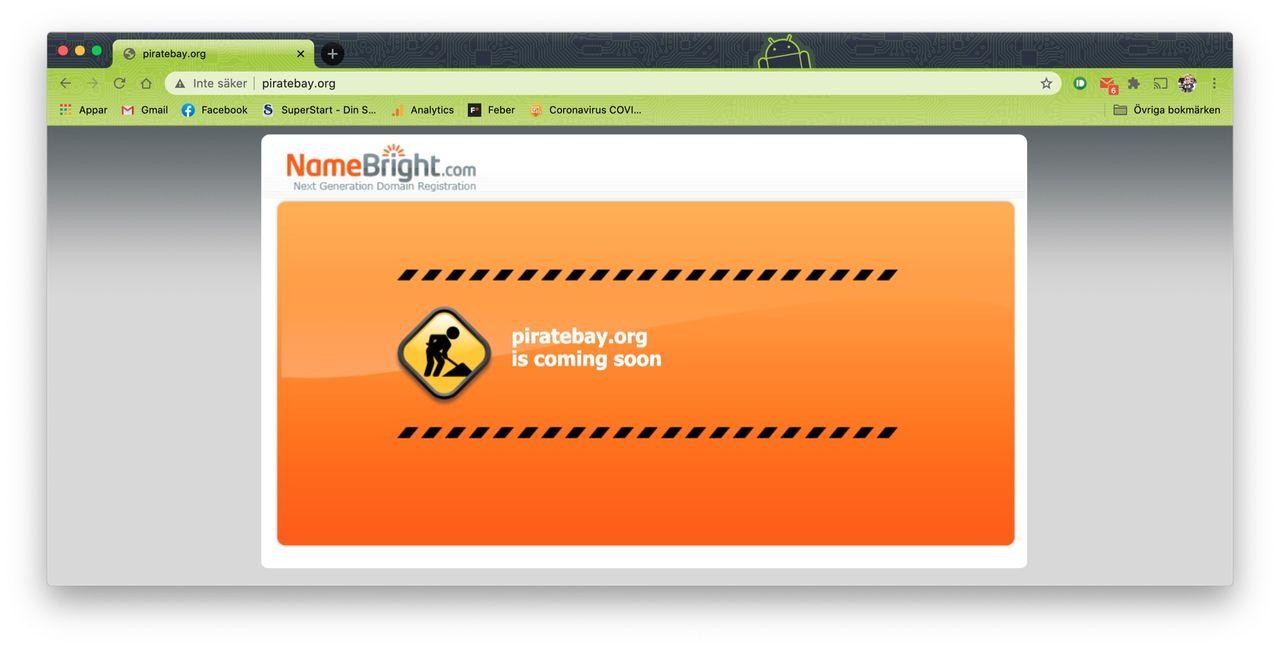 Någon har betalat 50.000 dollar för domänen piratebay.org