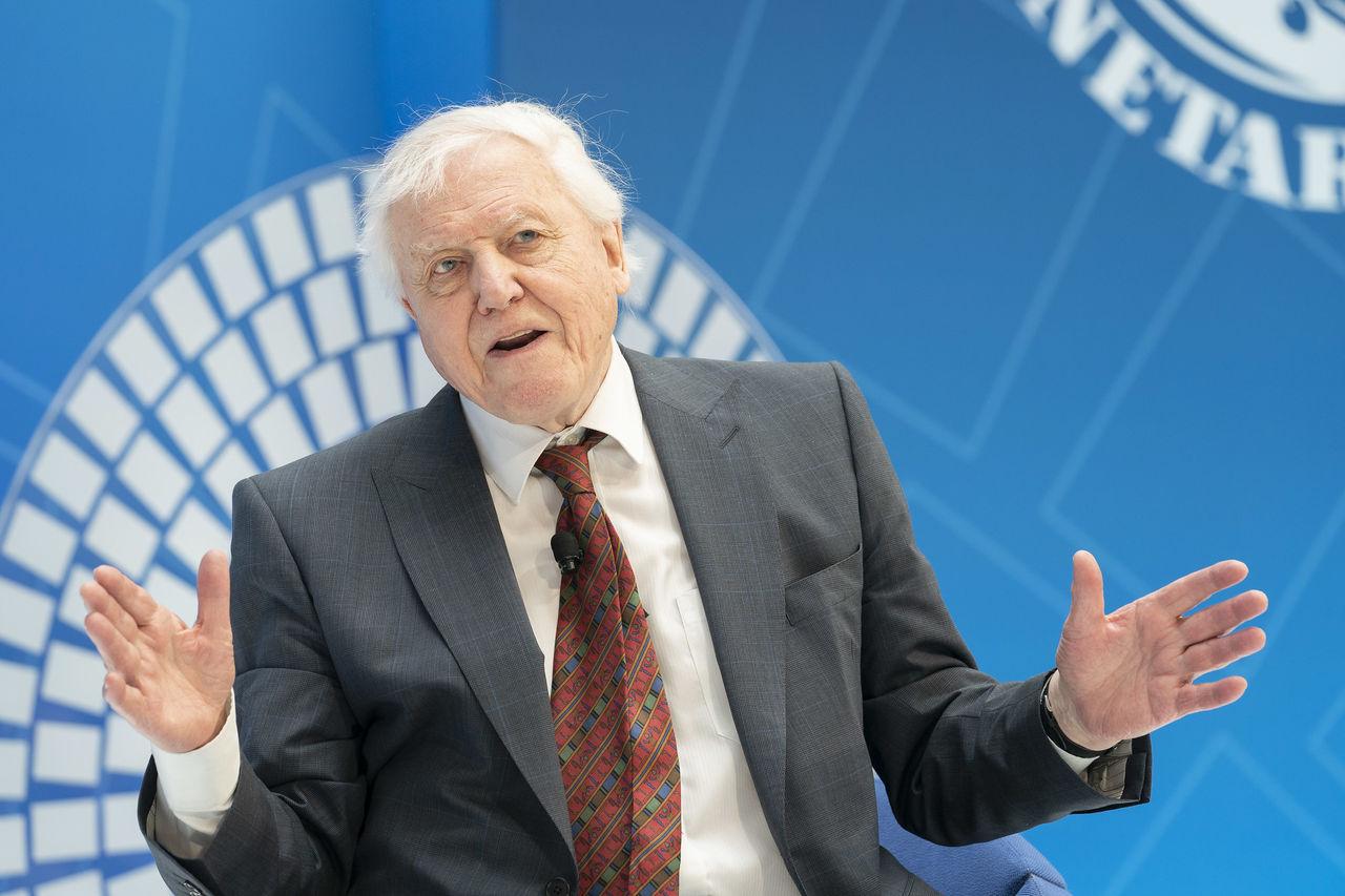 David Attenborough börjar instagramma