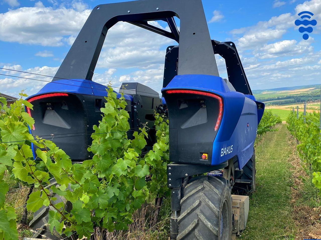 Bakus är en robot för vingårdar