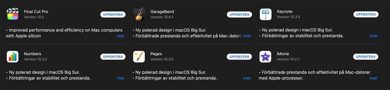 Apple uppdaterar program för Big Sur