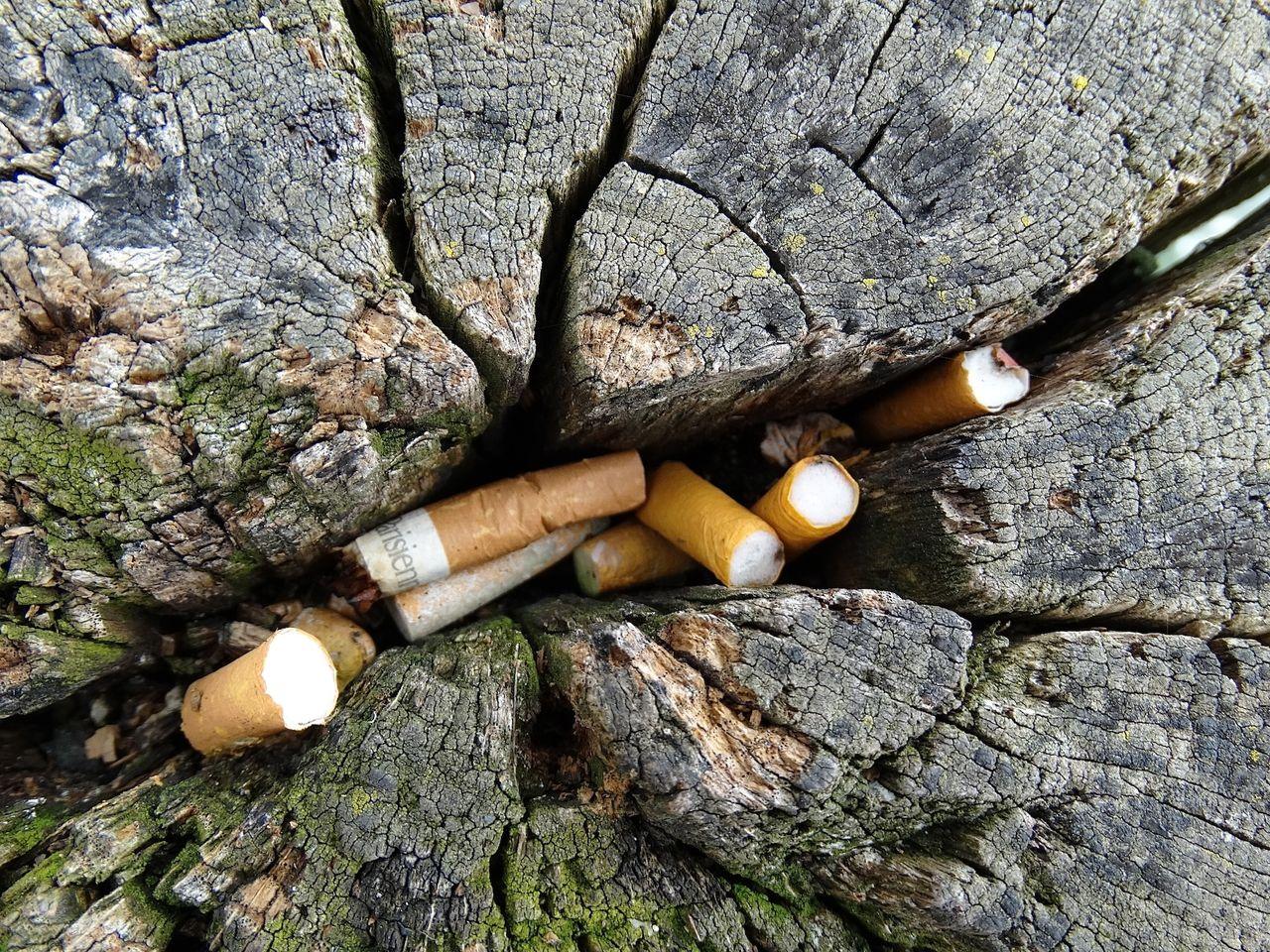 Förslag på böter för att slänga småskräp på gator och i naturen