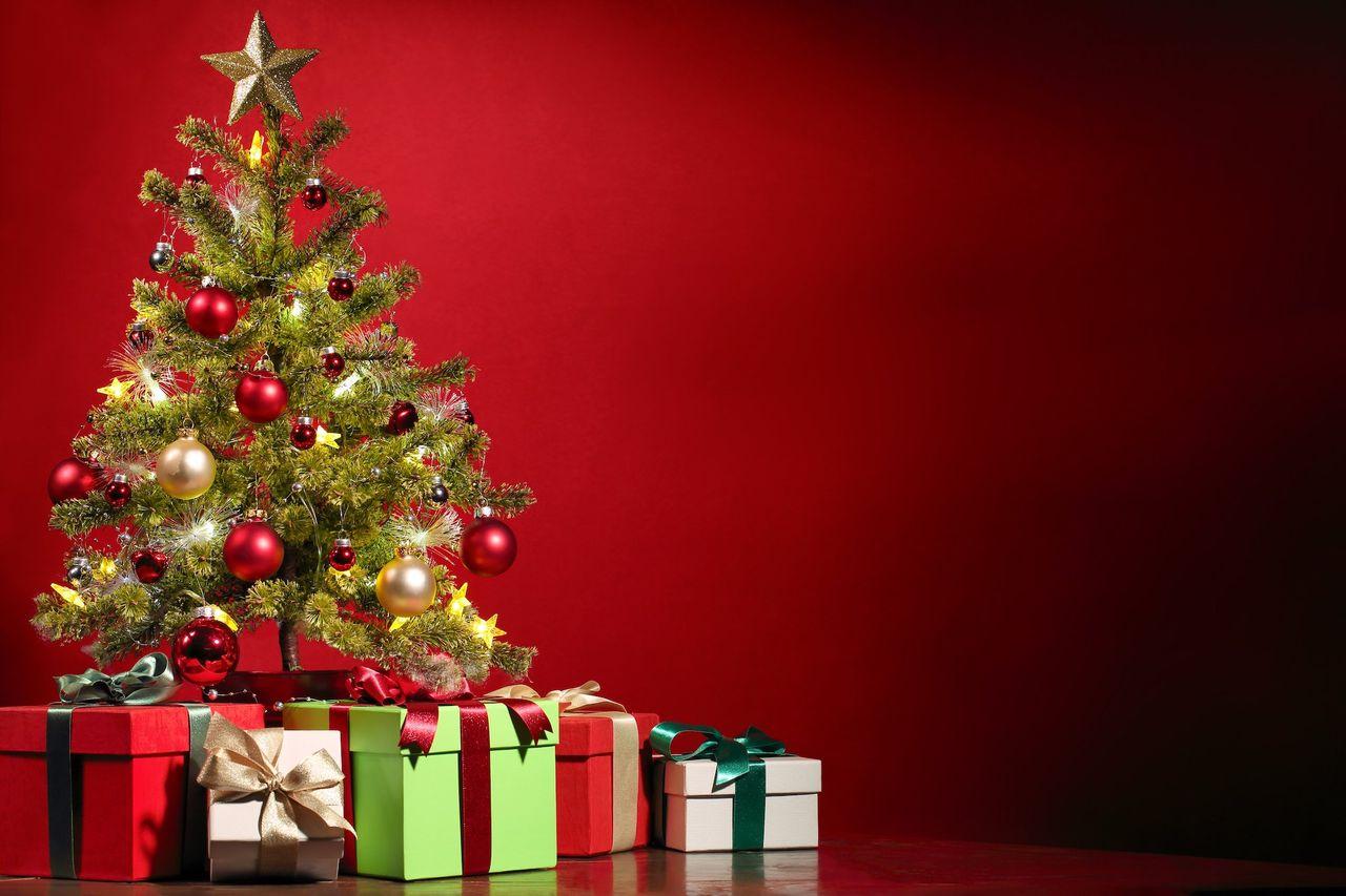 Vad fick du i julklapp?