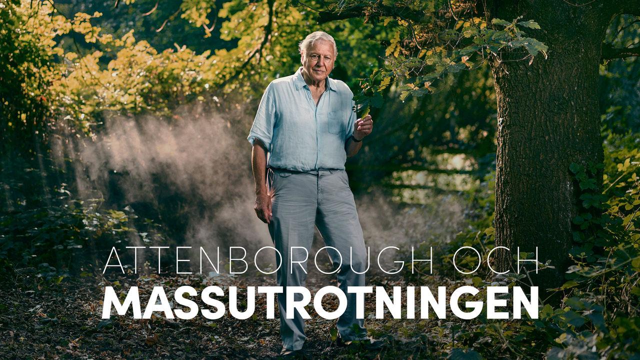 Kolla in Attenborough och massutrotningen