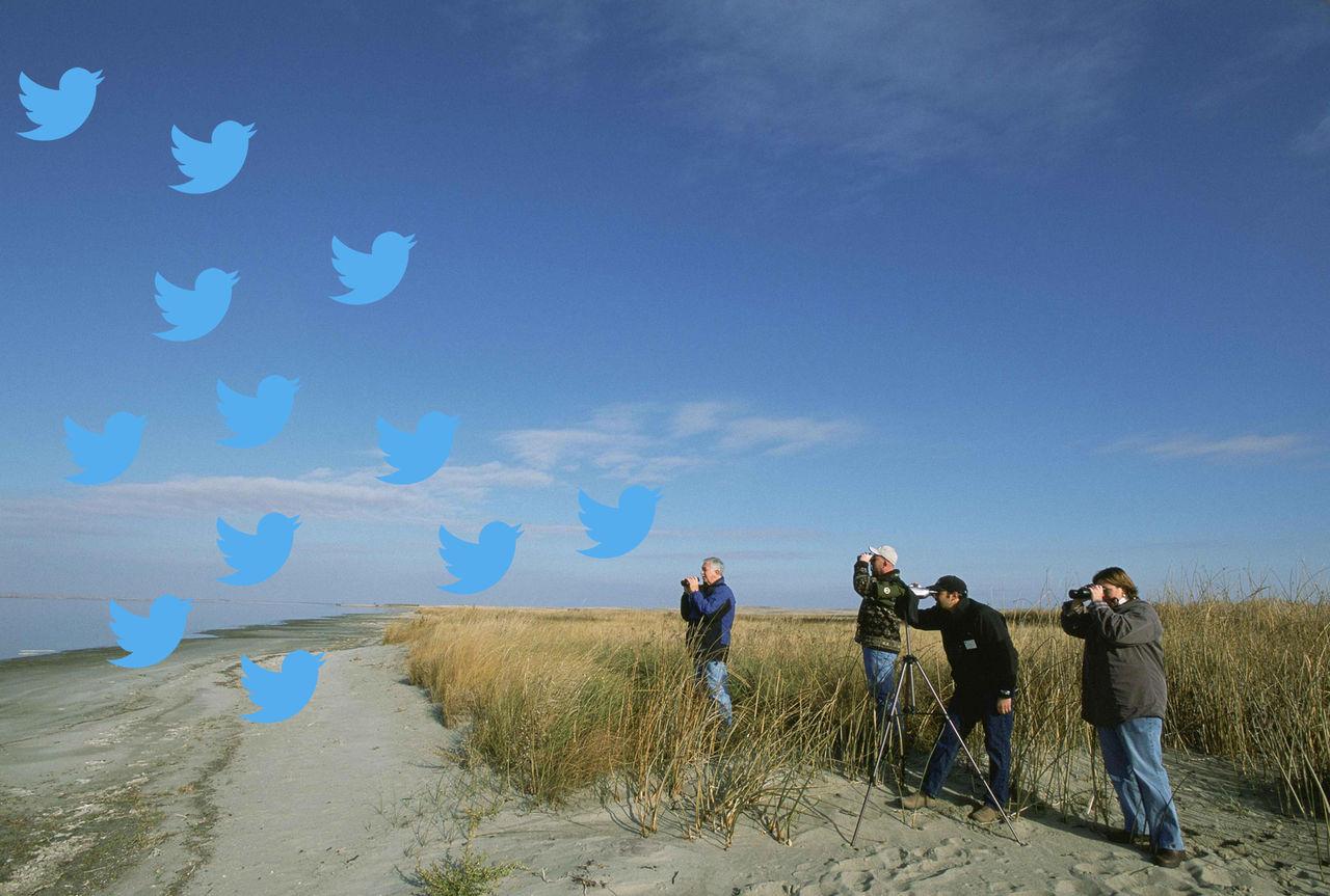 Twitter lanserar Birdwatch