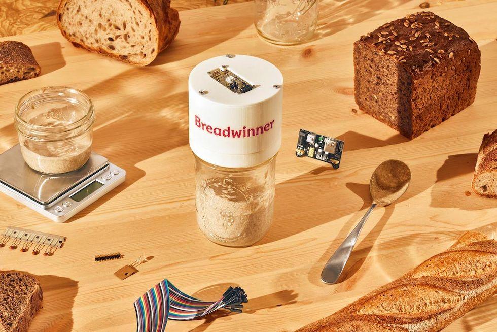 Breadwinner håller koll på din surdeg