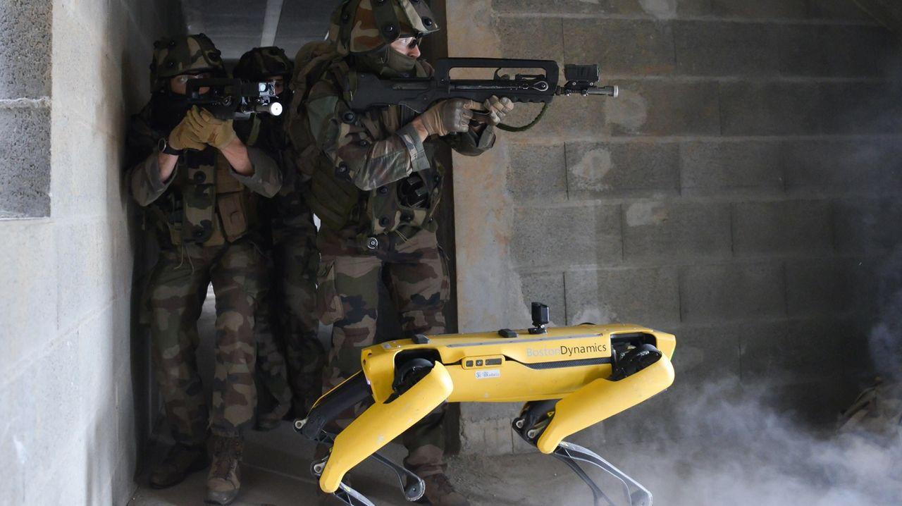 Fransk militär tränar tillsammans med robothunden Spot