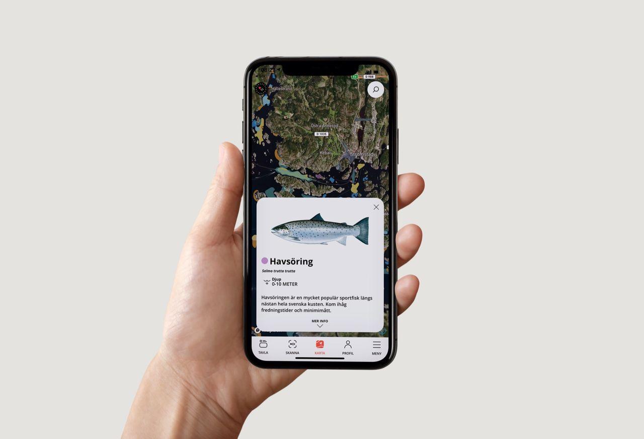 Hitta fisken med Fiskher