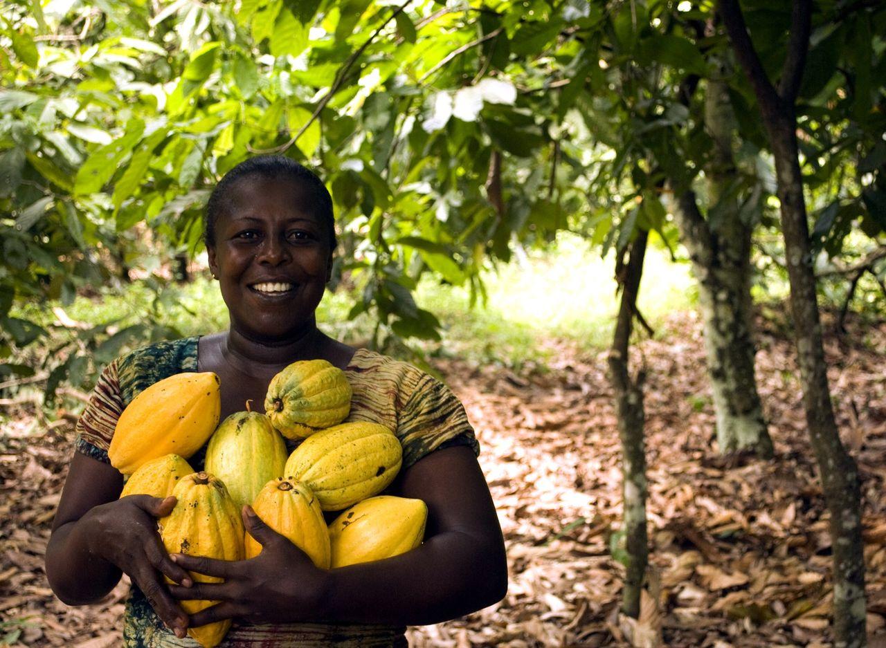 Ghana planterade fem miljoner träd