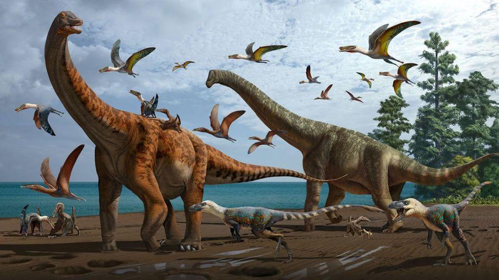 Två nya jättedinosaurie-arter upptäckta i Kina