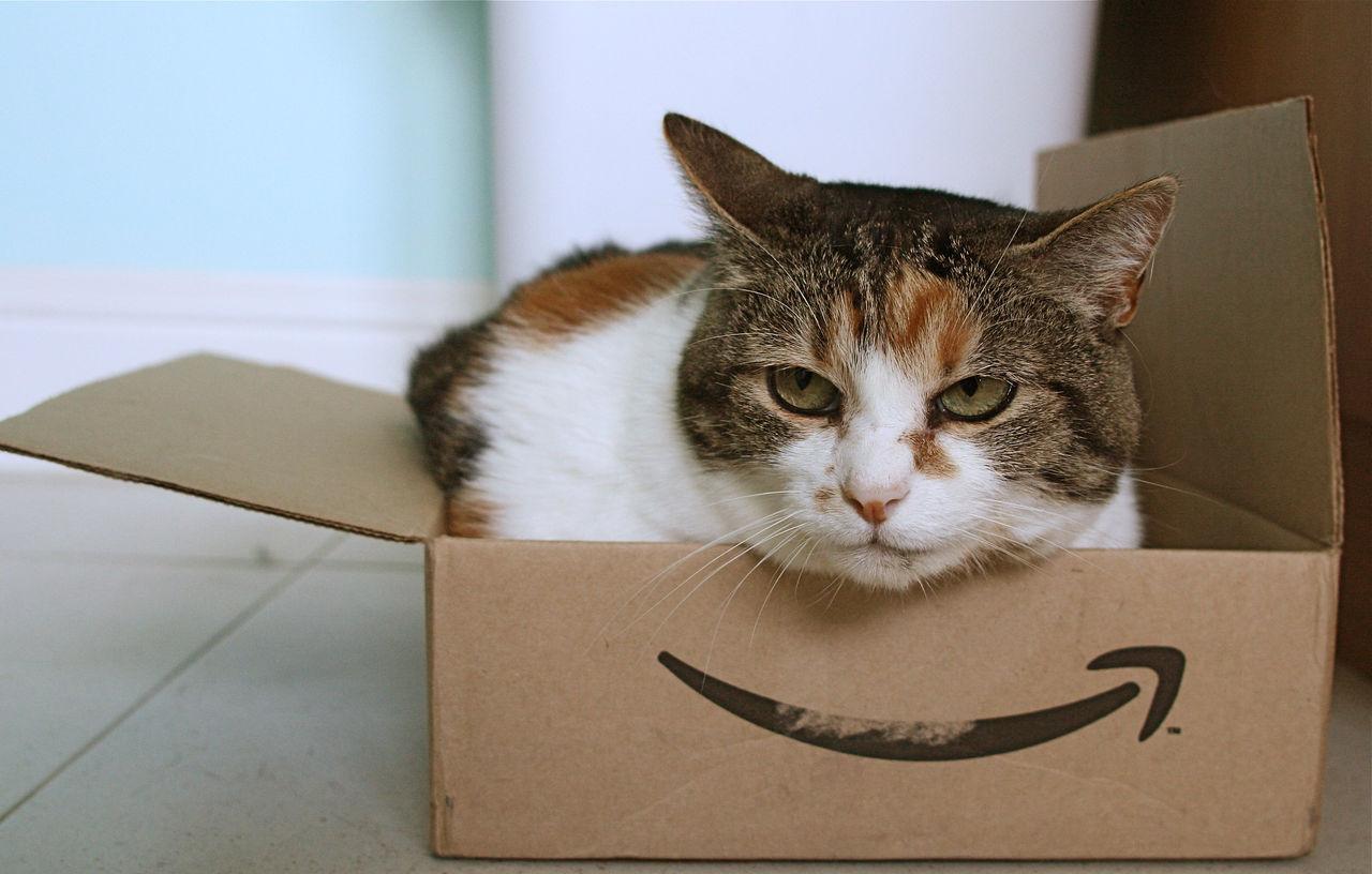 Amazon har portat 3000 kinesiska e-handlare från sin tjänst