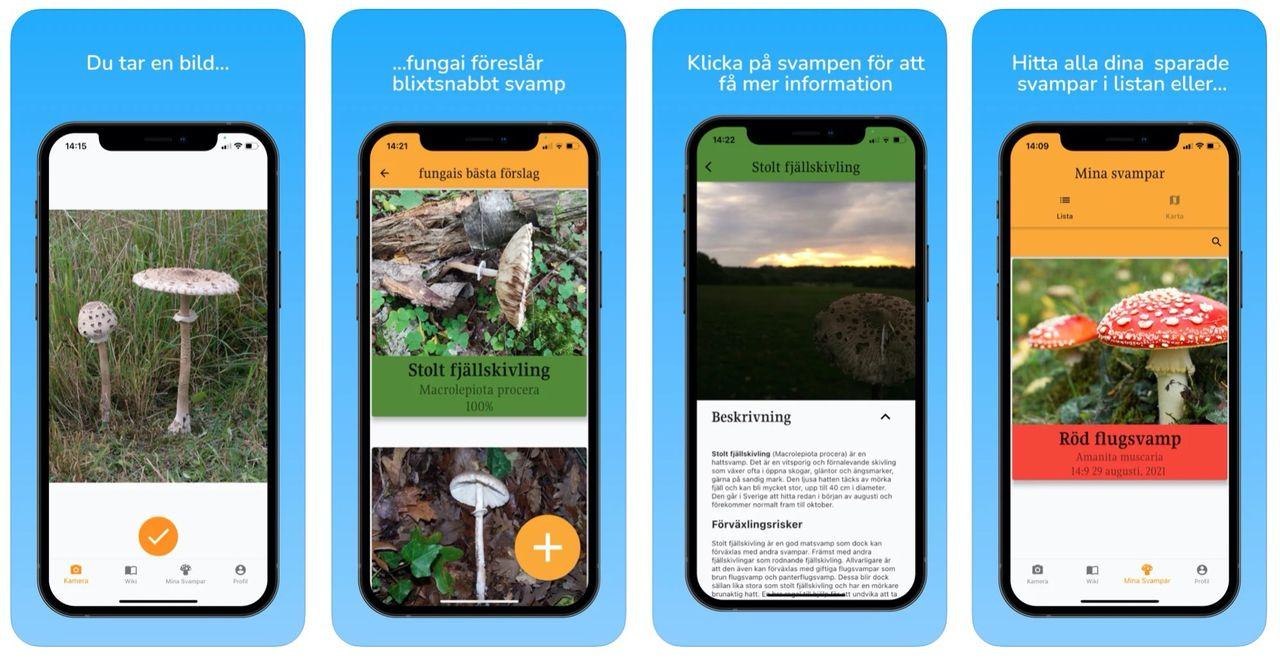 Håll koll på svampar med svenska appen Fungai
