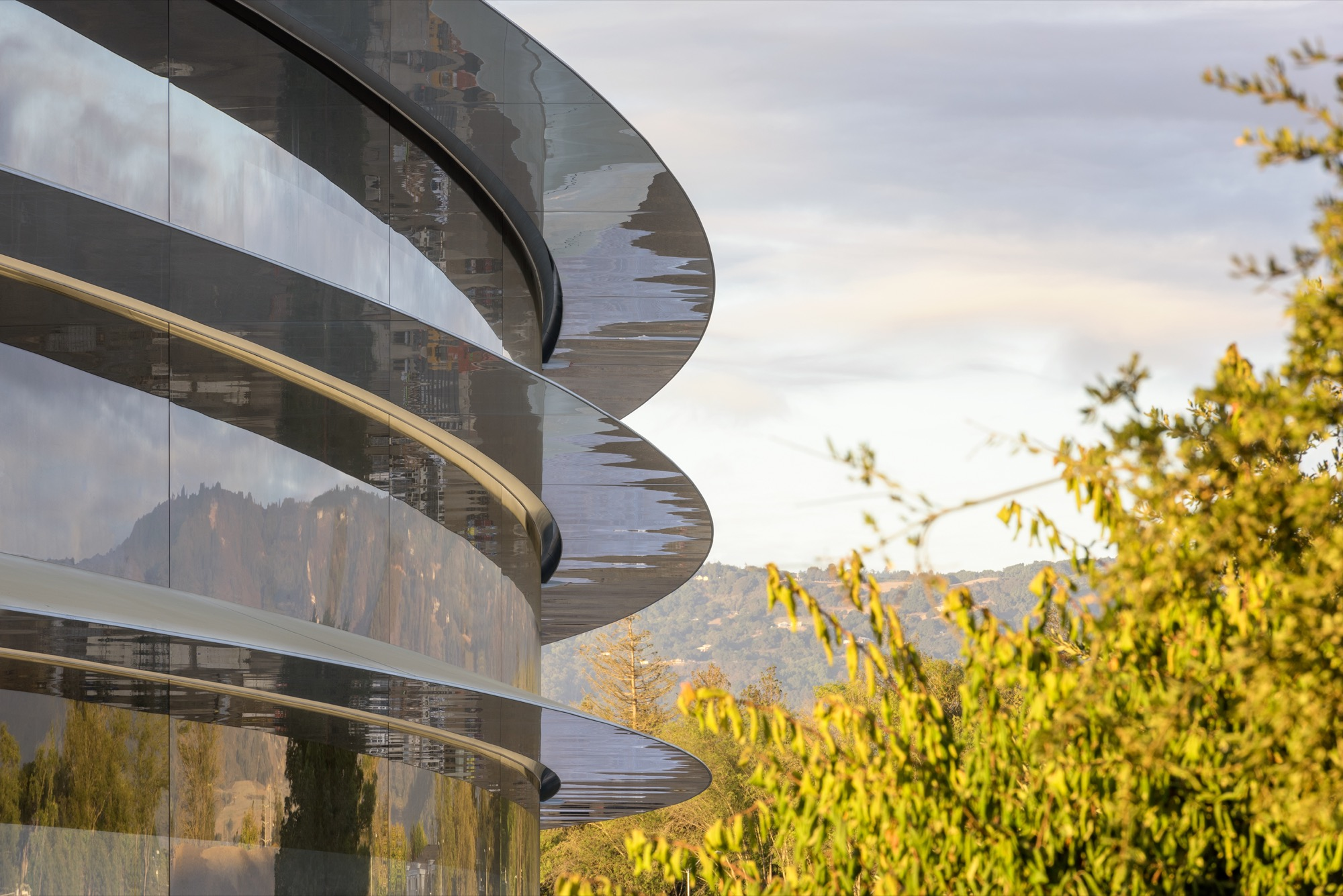 Tim Cook: Skvallerbyttor hör inte hemma hos Apple Gör allt för att hitta de som läcker